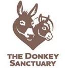 """""""Donkey Sanctuary"""""""