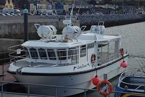 """Dingle Bay Charters Boat Tours"""