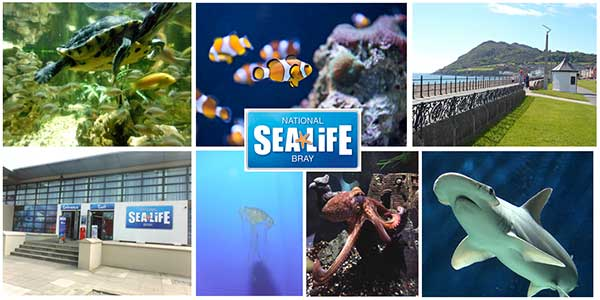 """Sea Life Aquarium Bray"""