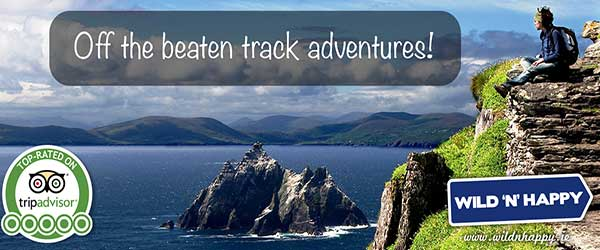 """Adventures with Wild 'N' Happy in Killarney"""