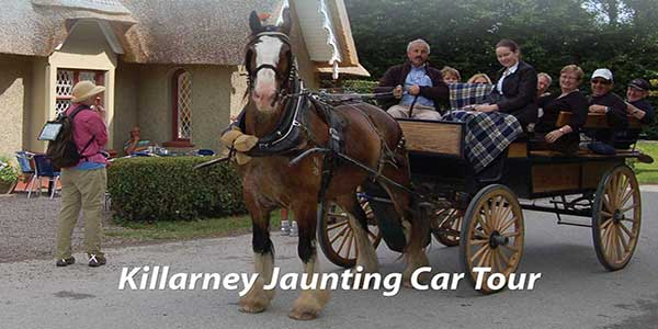 """Killarney Jaunting Car Tour"""