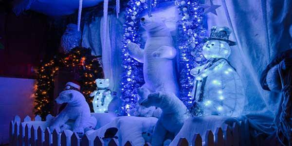 """""""Christmas Winter Wonderland Kia Ora Mini Farm"""""""