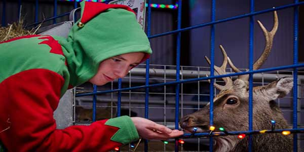 """""""Santa's Winter Wonderland at Kia Ora Mini Farm"""""""