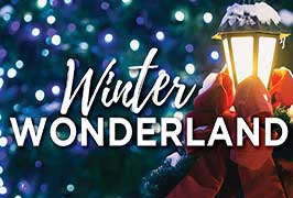 """Winter Wonderland Dublin"""