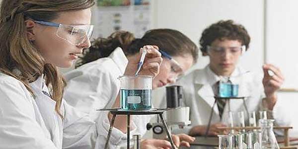 school-science-workshop