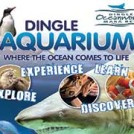 """Dingle Oceanworld Aquarium"""