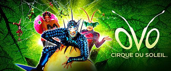 """""""Cirque du Soleil - OVO"""""""