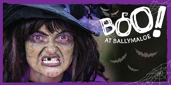 """Boo At Ballymaloe Halloween Event"""