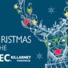 """Christmas Shows at the INEC Killarney"""