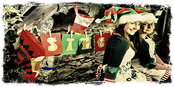 """Christmas Bus Tour in Dublin"""