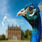 """Newbridge House and Farm"""