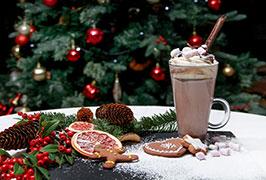 """Radisson Blu Hotel Christmas Family Breaks"""