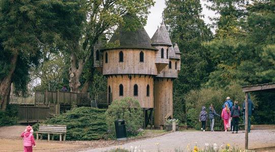 """""""Tree House in Birr Castle"""""""