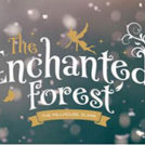 """Enchanted Forest Christmas Experience"""