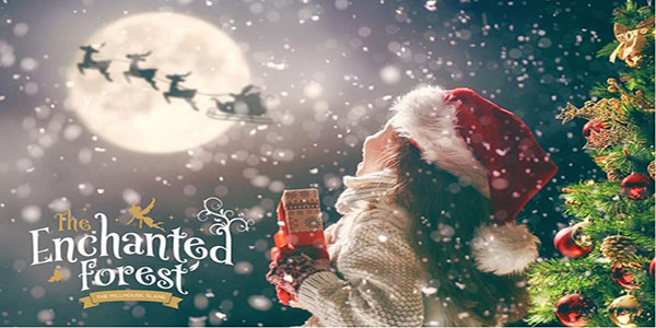 """Visit Santa at the Enchanted Forest Christmas Experience"""