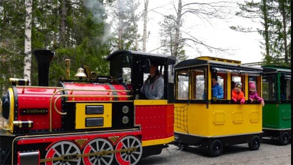 """""""Santa Express Train Wicklow"""""""