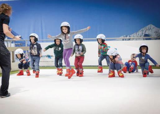 """Ski Centre Family Fun Dublin"""