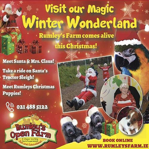 """Rumleys Christmas Experience"""