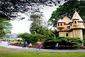 """Birr Castle Demesne Treehouse"""