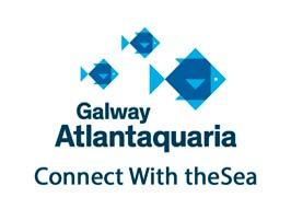 """Galway Aquarium Family Friendly Tour"""